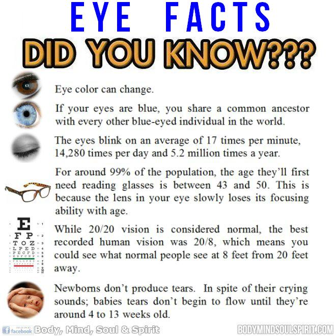 dyn-eyes