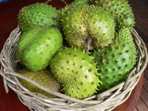 soursop basket