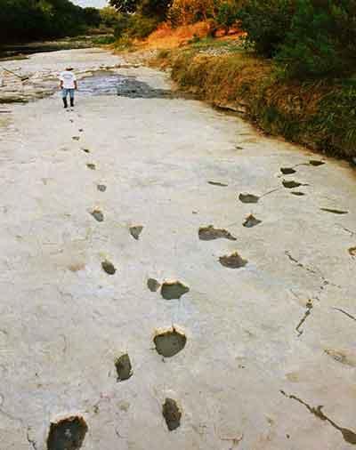 dinosaur-human-footprints